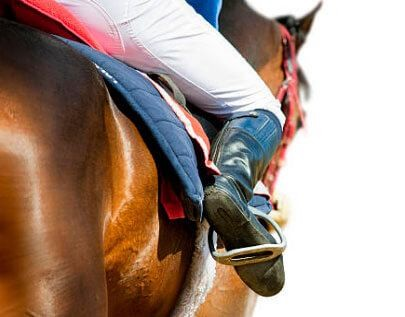 best Horse Racing betting odds comparison for Australian punters on this page