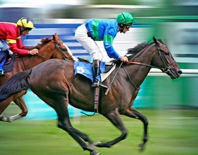 best Horse Racing betting odds comparison for Canada on this page