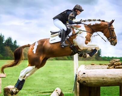 Equestrian betting odds