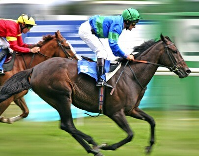 Horse Racing betting odds