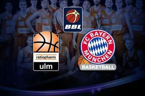 German basketball betting tips cs go betting csgo lounge assistant