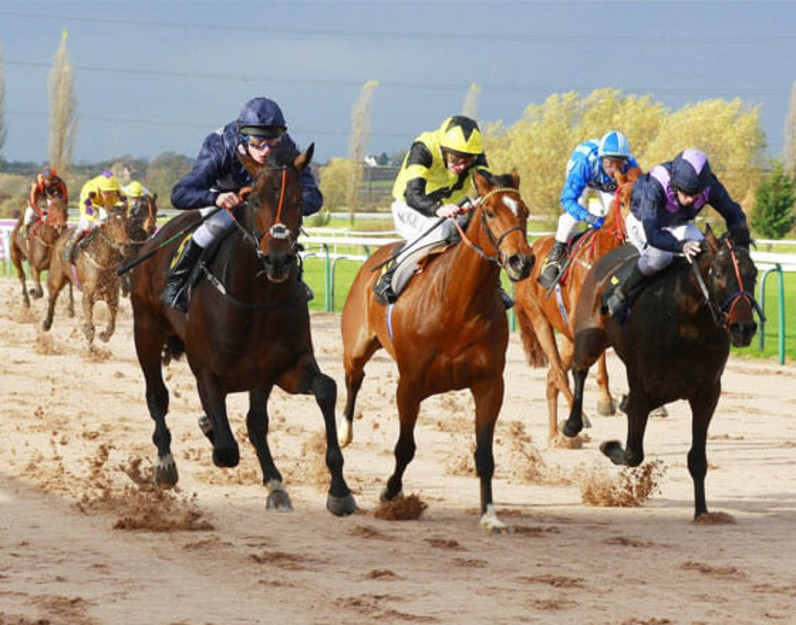 Southwell races betting tips semi electronic ag bettingen notaire