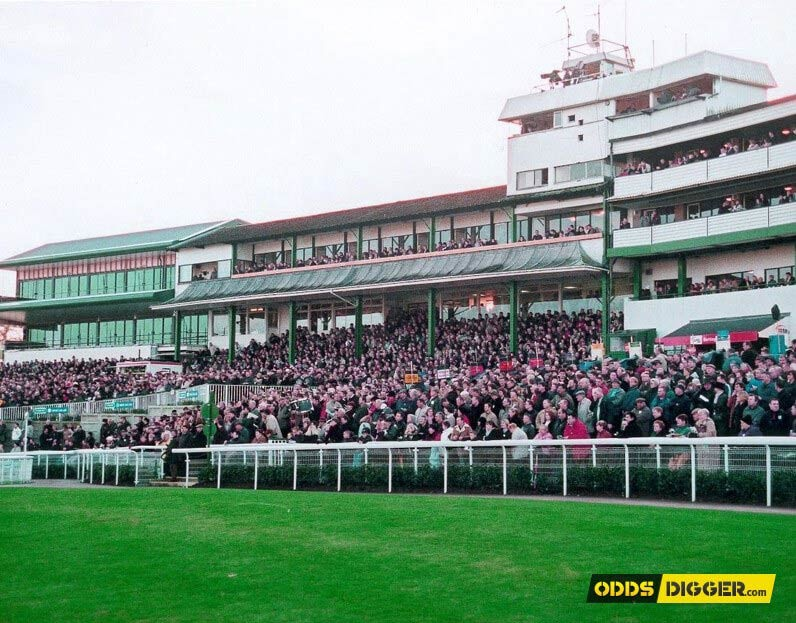 Chepstow & York Horse Racing Betting Tips for July 14   OddsDigger