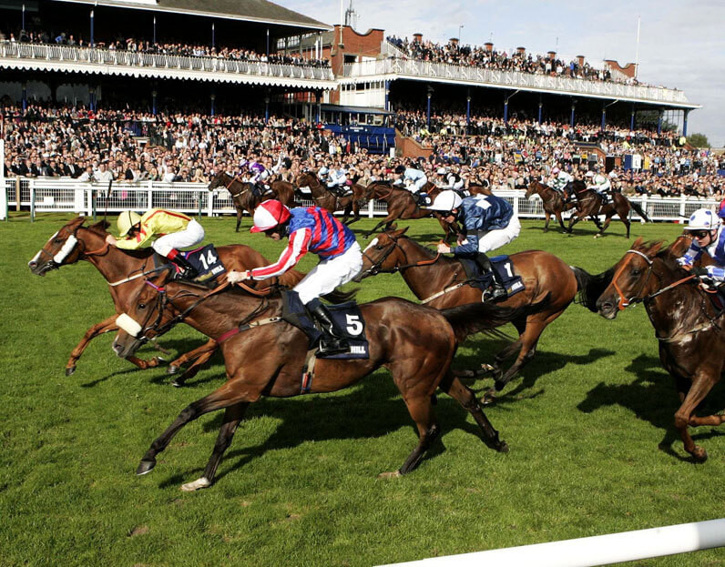 Lingfield Musselburgh Newbury Horse Racing Tips For Mar 24