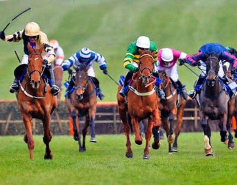 Chester, Doncaster, Salisbury, and Sandown Races -Best Horse Racing